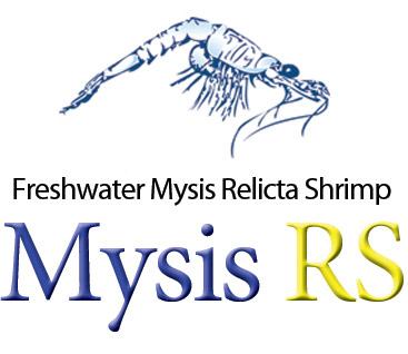 Mysis RS<sup>®</sup>